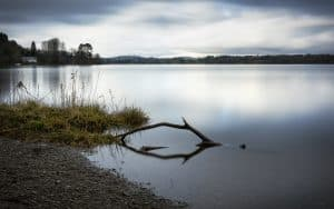 feshwater loch with a wooden branch sticking out of the water in the foreground