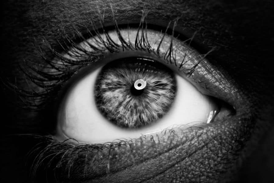 eye shot with a macro lens